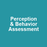 perception and behavior assessment section title
